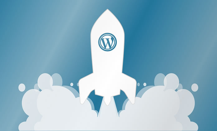 Instalación temas Wordpress | Diseño web de Rosario