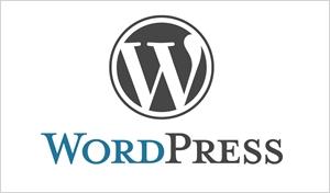 Instalación temas WordPress