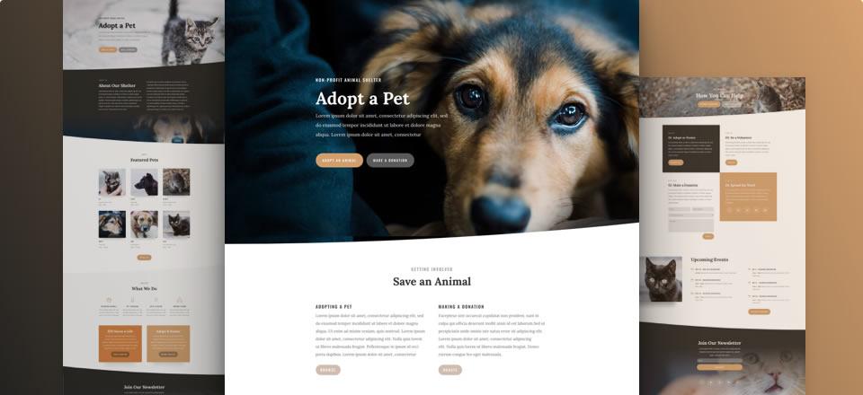 Página web cuidado de animales