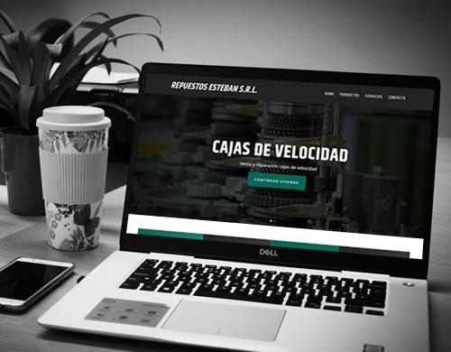 Sitio web Repuestos Esteban