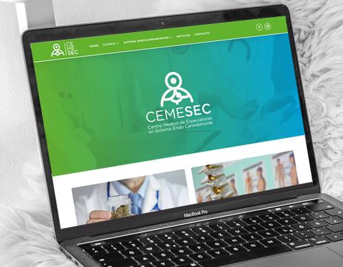 Sitio web Cemesec