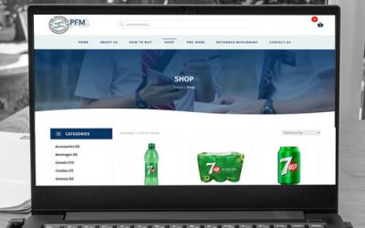 Sitio web PFM
